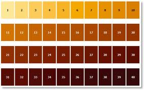 SRM Beer Colour Guide